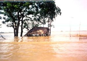 flooddt1