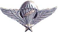 airbornewings