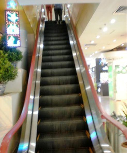 Những chiếc thang máy không người vẫn chạy đều đều.