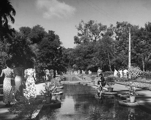 Vườn Maurice Long - Công viên Tao Đàn
