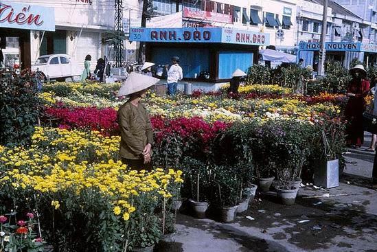 Chợ hoa Tết đường Nguyễn Huệ, Sài Gòn những năm 1960