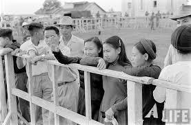 1954 ...Tiễn người thân di cư vào Nam tại Hải Phòng, trong số họ có bao nhiêu người còn gặp lại được người thân, ...